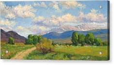 Colorado Summer Acrylic Print by Bunny Oliver