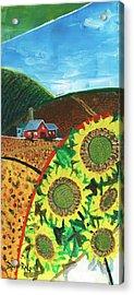 Colorado Sunflowers Acrylic Print
