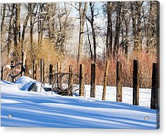Acrylic Print featuring the photograph Colorado Winter Snow Scene With Old Farming Rake And Rustic Fence by Nadja Rider