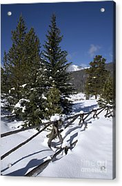 Colorado Winter Wonderland Acrylic Print