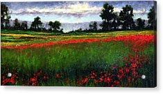 Colorburst Acrylic Print by Jim Gola
