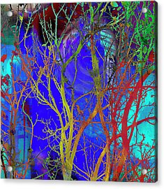 Acrylic Print featuring the photograph Colored Tree Branches by Susan Stone