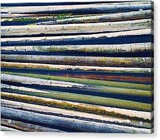 Colorful Bamboo Acrylic Print