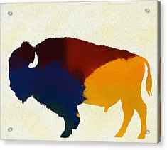 Colorful Bison Acrylic Print by Dan Sproul