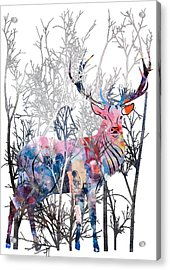 Colorful Buck Acrylic Print by Diana Van