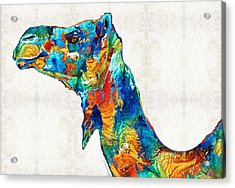 Colorful Camel Art By Sharon Cummings Acrylic Print by Sharon Cummings