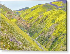 Acrylic Print featuring the photograph Colorful Canyon by Marc Crumpler