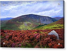 Acrylic Print featuring the photograph Colorful Carpet Of Wicklow Hills by Jenny Rainbow