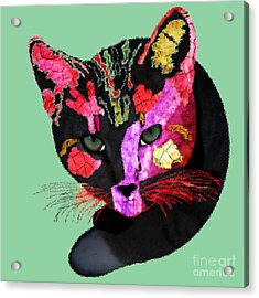 Colorful Cat Abstract Artwork By Claudia Ellis Acrylic Print by Claudia Ellis