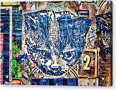 Colorful Cat Graffiti Number 1 Acrylic Print