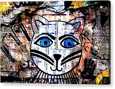 Colorful Cat Graffiti Number 2 Acrylic Print