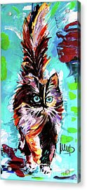 Colorful Cat Acrylic Print by Melanie D