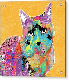 Colorful Cat With An Attitude- Art By Linda Woods Acrylic Print by Linda Woods