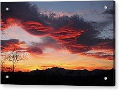 Colorful Dawn Over New Mexico's Peloncillo Mountains Acrylic Print