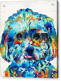 Colorful Dog Art - Lhasa Love - By Sharon Cummings Acrylic Print