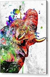 Colorful Elephant Acrylic Print by Daniel Janda