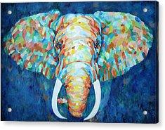 Colorful Elephant Acrylic Print by Enzie Shahmiri