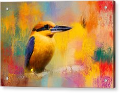 Colorful Expressions Kingfisher Acrylic Print by Jai Johnson