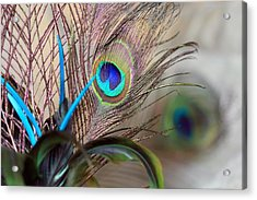 Colorful Feathers Acrylic Print