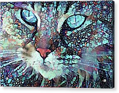 Colorful Flower Cat Art - A Cat Called Blue Acrylic Print