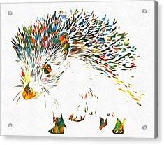 Colorful Hedgehog Acrylic Print