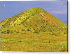 Acrylic Print featuring the photograph Colorful Hill by Marc Crumpler