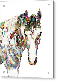 Colorful Horse Acrylic Print