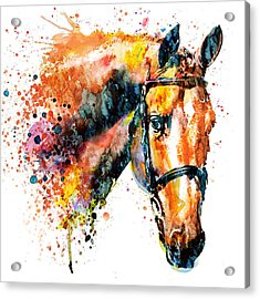 Colorful Horse Head Acrylic Print