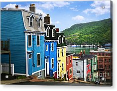 Colorful Houses In St. John's Acrylic Print