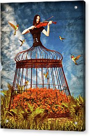 Colorful Hummingbird Song Acrylic Print by Mihaela Pater