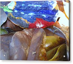 Colorful Leaves Acrylic Print by HollyWood Creation By linda zanini