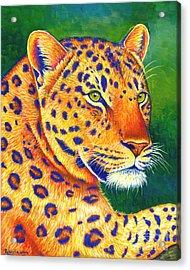 Colorful Leopard Portrait Acrylic Print