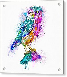 Colorful Owl Acrylic Print by Marian Voicu