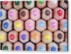 Colorful Pencils 2 Acrylic Print by Neil Overy