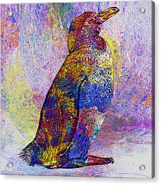 Colorful Penguin Acrylic Print
