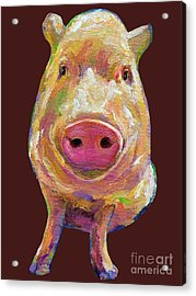 Colorful Pig Painting Acrylic Print