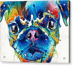 Colorful Pug Art - Smug Pug - By Sharon Cummings Acrylic Print by Sharon Cummings
