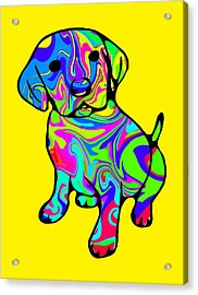 Colorful Puppy Acrylic Print by Chris Butler