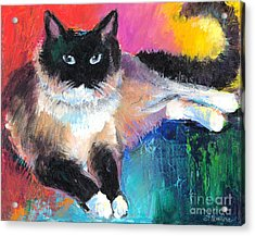 Colorful Ragdoll Cat Painting Acrylic Print by Svetlana Novikova