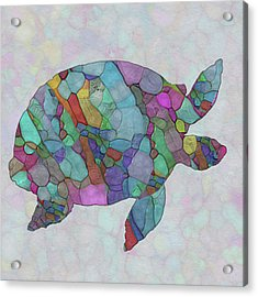Colorful Sea Turtle Acrylic Print by Jack Zulli
