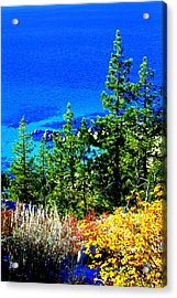 Acrylic Print featuring the photograph Colorful Shoreline by Lynn Bawden