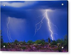 Colorful Sonoran Desert Storm Acrylic Print by James BO  Insogna