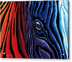 Colorful Stripes Original Zebra Painting By Madart In Black Acrylic Print by Megan Duncanson