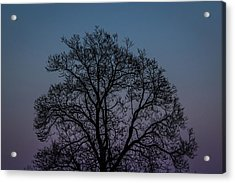 Colorful Subtle Silhouette Acrylic Print