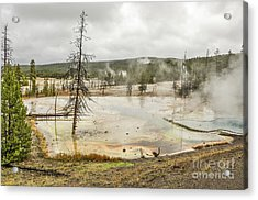 Acrylic Print featuring the photograph Colorful Thermal Pool by Sue Smith