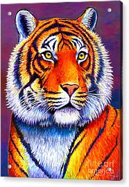 Colorful Tiger Acrylic Print