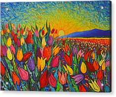 Colorful Tulips Field Sunrise - Abstract Impressionist Palette Knife Painting By Ana Maria Edulescu Acrylic Print