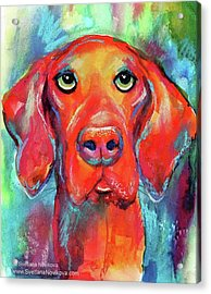 Colorful Vista Dog Watercolor And Mixed Acrylic Print