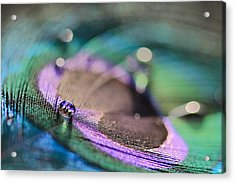 Colorful Water Droplet Acrylic Print