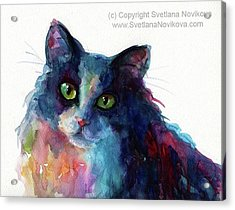 Colorful Watercolor Cat By Svetlana Acrylic Print